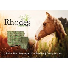 RHODES HAY STANDARD TWO STRING SQUARE BALE ***NEW SEASONS***