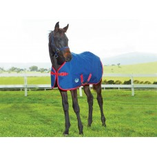 WEATHERBEETA 1200D FOAL RUG STANDARD NECK MEDIUM